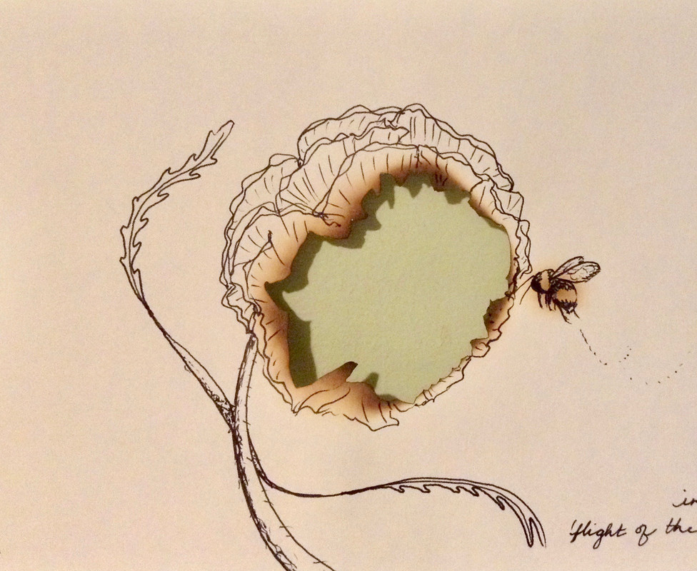 Modeled on bumblebee found inside screened porch. Fire, black permanent ink on sketch paper. Image description: Line drawing of a flower and a bumblebee. The paper in the center of the flower is burned out to reveal a light green layer underneath.