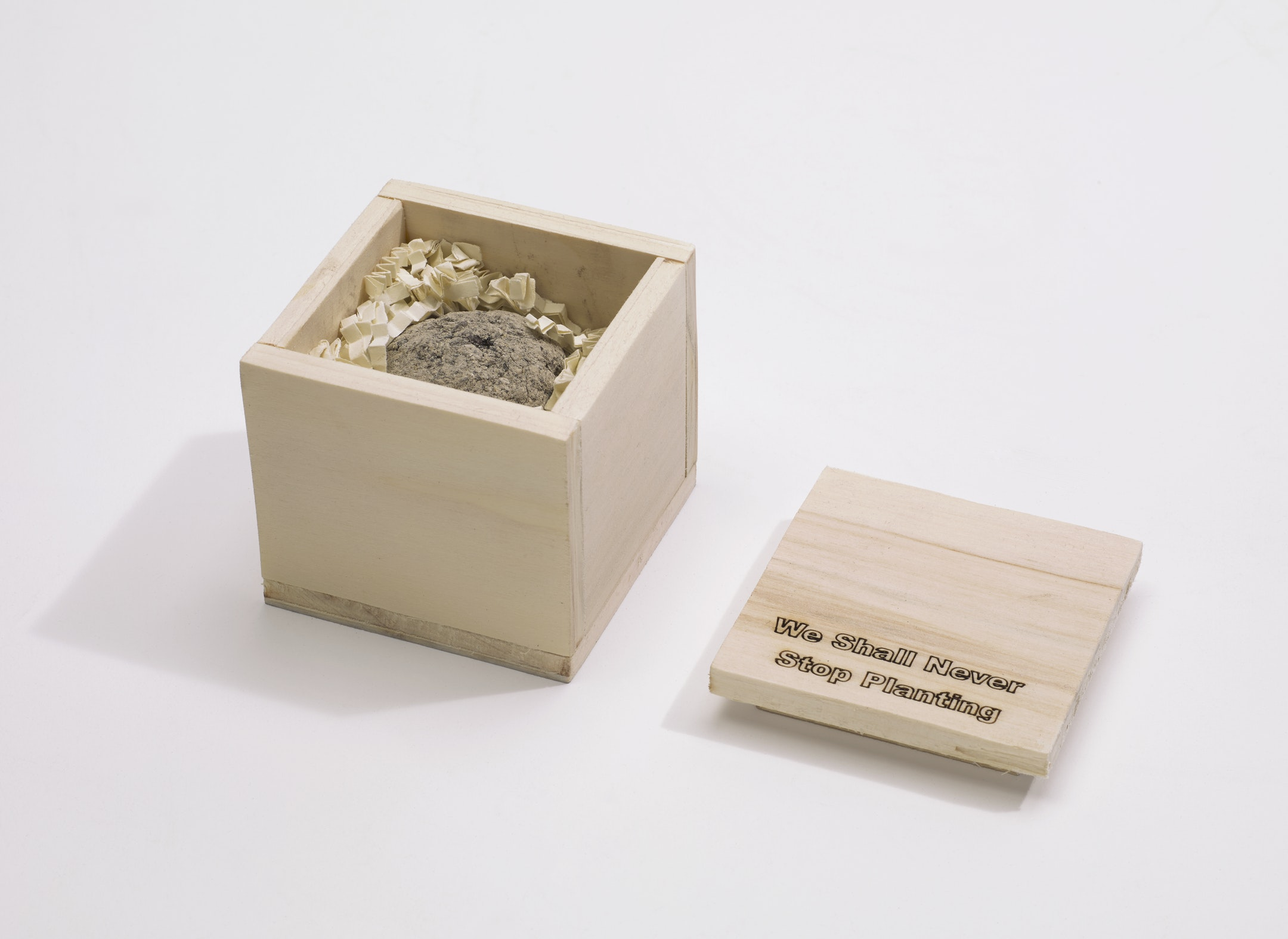 "A square, blond wooden box holds brown clay, compost, and shredded paper. The lid of the box is printed with the words, ""We Shall Never Stop Planting""."